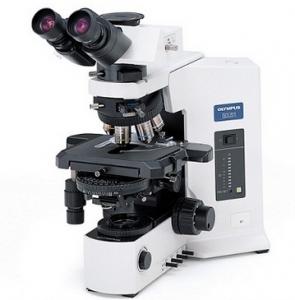 OLYMPUS奥林巴斯显微镜BX53