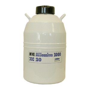 MVE XC20型号液氮罐
